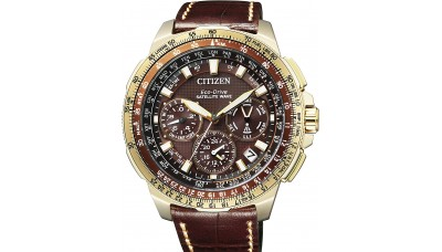 Citizen CC9023-13X Promaster Eco Drive GPS Satellite Wave F900 Limited 700